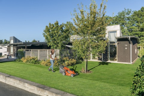 10 Lawn Mowing Tips for a Professional Finish