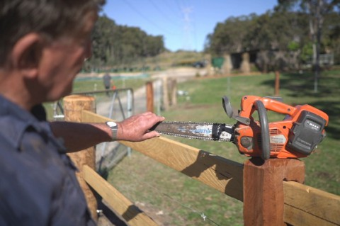 Working with Chainsaws - a Beginners Guide